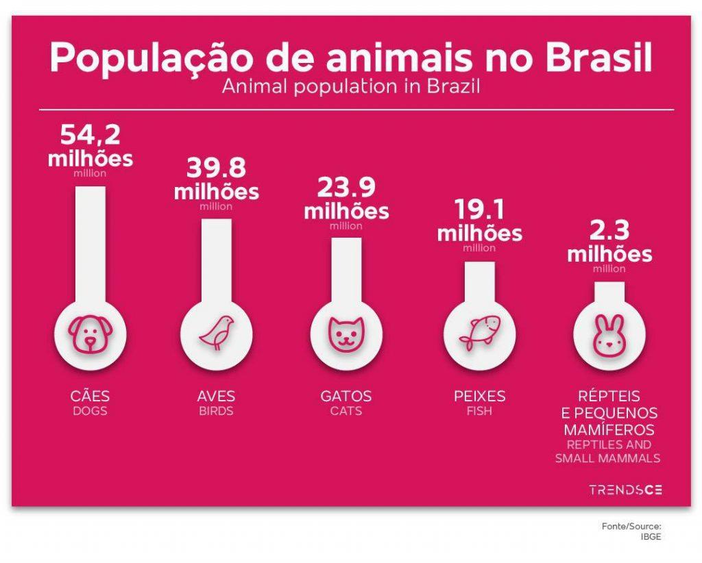 Pet no Brasil