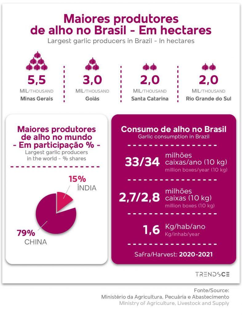 Maiores produtores de alho no Brasil