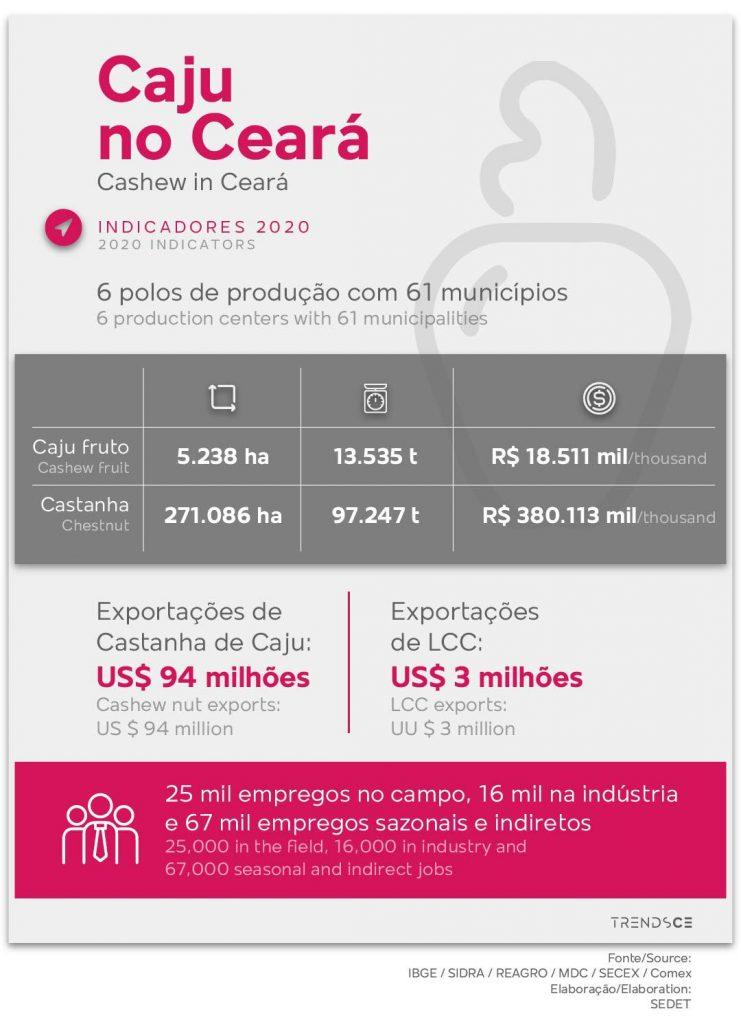 Indicadores do Caju no Ceará em 2020
