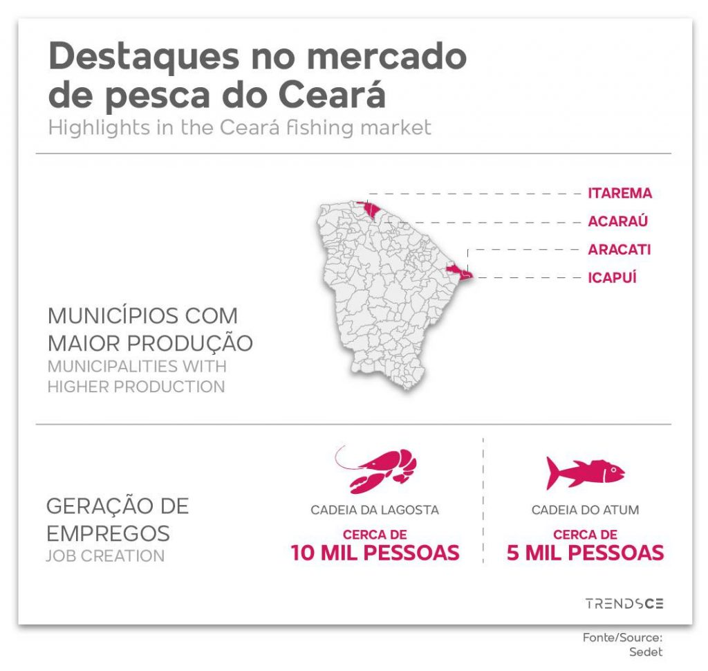 Destaques no mercado de pesca do Ceará